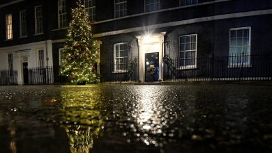 Photo of No 10 fishing offer to EU raises hopes of Brexit deal before Christmas