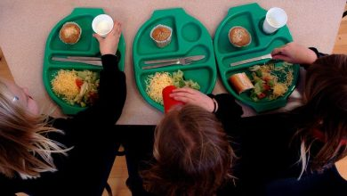 Photo of Firm given free school meals voucher contract despite 'limited evidence' of capability