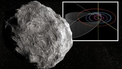 Photo of Asteroid tracker: NASA confirms biggest asteroid to pass this year will reach 77,000mph