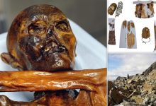 Photo of Archaeology breakthrough: 5,300-year-old human corpse discovered by accident